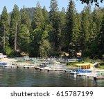 lake life | Shutterstock . vector #615787199