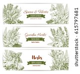herbs  spices and seasoning... | Shutterstock .eps vector #615797681