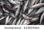fish at the market. low light ... | Shutterstock . vector #615825461