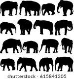 asian elephant silhouette...   Shutterstock .eps vector #615841205