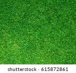 beautiful green grass texture | Shutterstock . vector #615872861