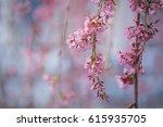 soft focus beautiful pink... | Shutterstock . vector #615935705