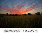 colorful evening sky over the... | Shutterstock . vector #615969971
