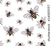 embroidery big honey bee and... | Shutterstock .eps vector #616005557