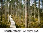 a beautiful wooden footpath in... | Shutterstock . vector #616091465