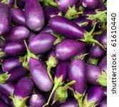 eggplant purple from market | Shutterstock . vector #61610440