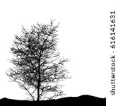 realistic tree silhouette ...   Shutterstock . vector #616141631