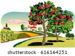 orchard with rows of apple... | Shutterstock .eps vector #616164251