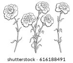 carnation flower graphic black... | Shutterstock .eps vector #616188491