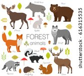 forest animals isolated set.... | Shutterstock . vector #616315535