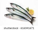 Stock photo fresh mackerel fishes on white background 616341671