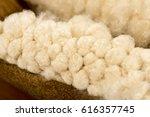 white silk cotton tree   ceiba  ... | Shutterstock . vector #616357745