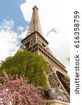 Springtime In Paris. Blossomin...