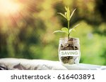 plant growing in savings coins  ... | Shutterstock . vector #616403891