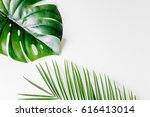 floral concept with green... | Shutterstock . vector #616413014