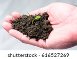 green sprout in hand | Shutterstock . vector #616527269