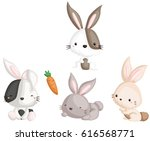 rabbit | Shutterstock .eps vector #616568771