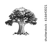 vintage tree illustration | Shutterstock .eps vector #616643021