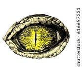 eye of a crocodile or reptile... | Shutterstock .eps vector #616697231