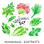hand drawn watercolor set of... | Shutterstock . vector #616756271