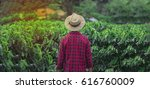 farmer with hat in cultivated... | Shutterstock . vector #616760009
