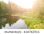 the lake in the summer forest | Shutterstock . vector #616762511