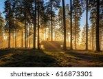 wooden house | Shutterstock . vector #616873301