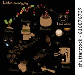 coffee processing step by step | Shutterstock .eps vector #616876739