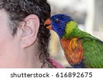 Small photo of Parrot on shoulder whispers in ear. A little bird told me.