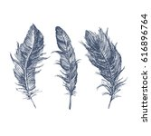 feather pattern | Shutterstock .eps vector #616896764