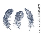 feather pattern | Shutterstock .eps vector #616896779