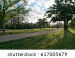 houston parks   Shutterstock . vector #617005679