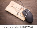 Computer Mouse Caught By The...