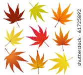 set of of autumn  maples leaves | Shutterstock . vector #61725892