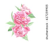 watercolor peonies bouquet ... | Shutterstock . vector #617259905
