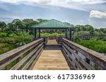 nature walk in florida | Shutterstock . vector #617336969