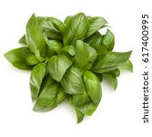 sweet basil herb leaves bunch... | Shutterstock . vector #617400995