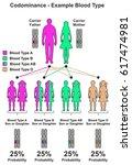codominance example blood type... | Shutterstock .eps vector #617474981