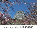 pink sakura full bloom at... | Shutterstock . vector #617554985