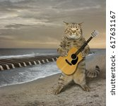 Stock photo the cat with a guitar is on a deserted beach the sea waves look like piano keys 617631167
