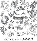 vector illustration sketch  ... | Shutterstock .eps vector #617688827