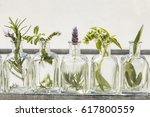 bottle of essential oil with... | Shutterstock . vector #617800559
