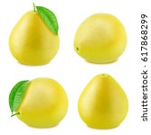 set of pomelo isolated on a... | Shutterstock . vector #617868299