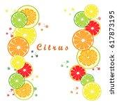 abstract vector logo for citrus ... | Shutterstock .eps vector #617873195