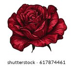 Stock vector hand drawn red rose on green background vector illustration vintage tattoo style rose 617874461