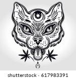 hand drawn beautiful artwork of ...   Shutterstock .eps vector #617983391