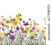 beautiful composition of wild... | Shutterstock . vector #617988521