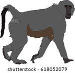 hand drawn portrait of a wild ... | Shutterstock .eps vector #618052079