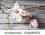 Small photo of flowers magnolia on wood table. Magnolia stellata . Still life.