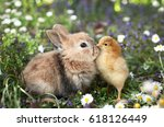 best friends bunny rabbit and... | Shutterstock . vector #618126449
